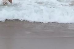 Beach Dare x264
