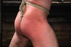 Inked bondage dom sixtynines suspended a load off one's feet